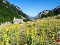 Val d'Escreins ©Rémi MOREL - OT Vars